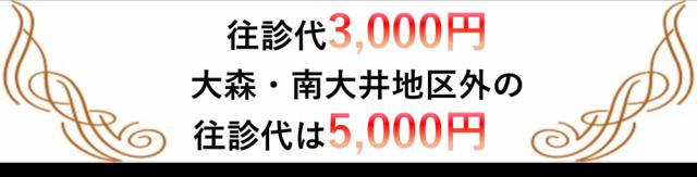 往診代3,000円、大森、南大井地区外の往診代は5,000円