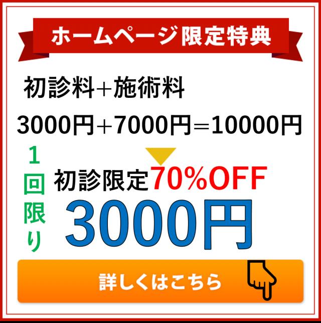 初回限定70%OFF3000円